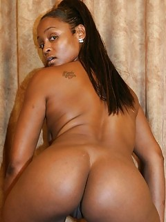Mystique - Ebony Body - Atk Exotic